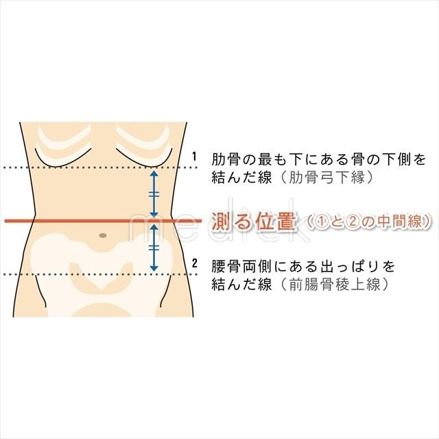 腹囲測定の方法のイラスト - 医...