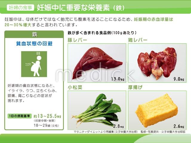 レバー 栄養